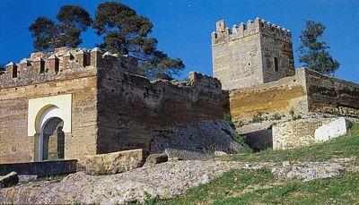 20110305202930-castillo-de-luna.jpg